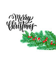 merry christmas holiday hand drawn quote vector image vector image