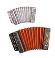 sketch accordion musical instrument vector image vector image