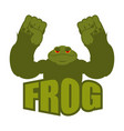 strong frog powerful toad with large muscles vector image