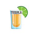 tequila shot lime flat icon design vector image