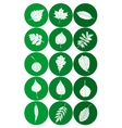Set of Abstract Leaf Icons vector image