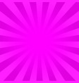 bright pink rays background vector image vector image
