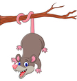 Cartoon funny Opossum on a Tree Branch vector image vector image