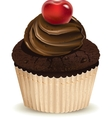 Chocolate muffin vector image vector image