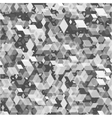 Geometric pattern texture vector image vector image