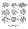 set ink tropical fishes vector image vector image