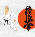 The the man shows karate vector image vector image