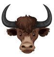 Buffalo head on white background vector image vector image
