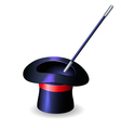 Conjurer hat and magic wand vector image