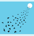 flock of many birds flying towards sun vector image vector image