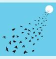 flock of many birds flying towards sun vector image