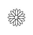flower petals icon vector image