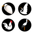 set of abstract birds on black circles for logo vector image vector image