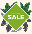 summer sale with tropical palm leaves and white vector image