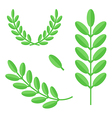 Flat design green branches with leaves set vector image