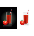 fresh tomato juice glass vector image vector image