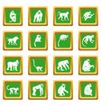 monkey types icons set green vector image vector image