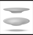 realistic plate vector image vector image