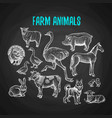set farm animals in chalk style on blackboard vector image