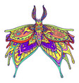 butterfly fantasy rainbow color page vector image vector image