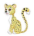 Cartoon funny leopard sitting isolated vector image vector image