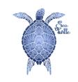 Hawksbill sea turtle vector image vector image