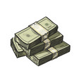 much money wads cash earnings finance vector image