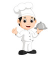 cute little chef bringing the dishes vector image vector image