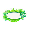 empty banner with frame tropical palm leaves vector image vector image