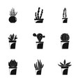 home cacti icon set simple style vector image