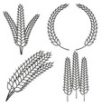 line art black and white ripe wheat ear set vector image