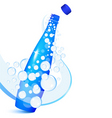 sparkling water bottle vector image