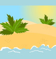 sandy beach tropical cost background vector image