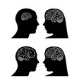 brain in head man and woman vector image vector image