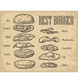 Burger ingredients on chalkboard Isolated painted vector image vector image