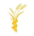 Ears of Wheat Barley or Rye visual graphic vector image vector image