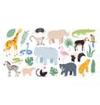 flat wild safari animals from rainforest vector image vector image