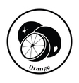 Icon of Orange vector image vector image