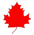 maple leaf red sign 207 vector image vector image