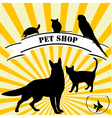 Pet shop advertising vector image
