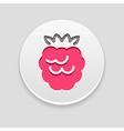 Raspberry icon Fruit