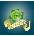 St Patricks Day background vector image