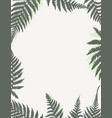 template frame with fern leaves vector image vector image