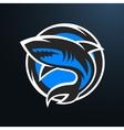 Shark sport logo on a dark background vector image