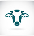 a cow head design on white background farm animal vector image vector image