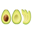 avocado half of the fruit and cut into slices vector image vector image
