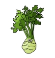 Cartoon celery with root vector image vector image