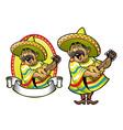 cartoon mexican man playing guitar vector image vector image