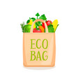 eco bag full vegetables and fruits vector image