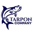 fish tarpon logo vector image vector image